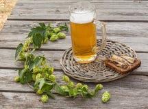 Verre de bière et de pain brun avec des esprots sur une table en bois images libres de droits
