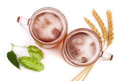 Verre de bière mousseuse avec le houblon et le blé en cônes d'isolement sur le fond blanc Vue supérieure Image libre de droits