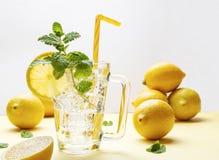 Verre de boisson de soude avec les tranches de citron, la menthe et les glaçons photos stock