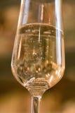 Verre de Champagne avec des bagues de fiançailles Image libre de droits
