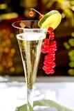 Verre de Champagne avec la groseille rouge Photographie stock