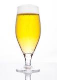 Verre de cidre de bière avec le blanc d'or de couleur de mousse Photos libres de droits