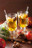 Verre de cidre de pomme chauffé avec l'orange et les épices, Noël De Photographie stock libre de droits