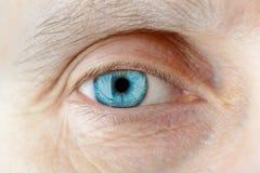 Verre de contact sur l'oeil Photographie stock libre de droits