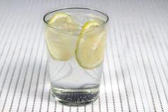 Verre de genièvre et de tonique avec plusieurs tranches de citron Images libres de droits