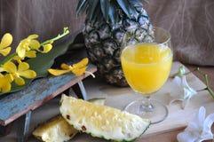 Verre de jus d'ananas avec l'ananas frais Photo libre de droits