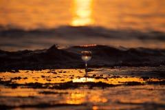 Verre de la vigne blanche avec des réflexions du soleil et de mer sur le backg photographie stock libre de droits