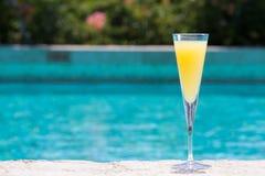 Verre de mimosa photos libres de droits