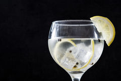 Verre de tonique de genièvre avec le citron photo libre de droits