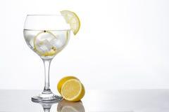 Verre de tonique de genièvre avec le citron image libre de droits