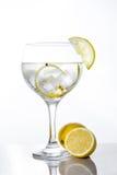 Verre de tonique de genièvre avec le citron photographie stock libre de droits