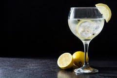 Verre de tonique de genièvre avec le citron sur la pierre noire photos stock