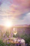 Verre de vin contre la lavande photos stock