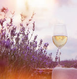 Verre de vin contre la lavande Photo libre de droits