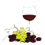 Verre de vin rouge avec des raisins Images stock