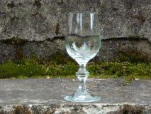 Verre de vin vide Image stock