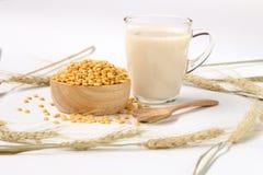 Verre de vues de lait de haricot de soja à partir de dessus avec le haricot de soja de fente sur la barre photographie stock libre de droits