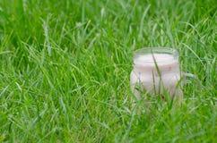 Verre de yaourt dans l'herbe verte, l'espace pour le texte Image stock