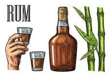 Verre et bouteille de rhum avec la canne à sucre illustration stock