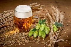 Verre et houblon de bière Images libres de droits