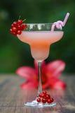 Verre formé avec le cocktail de pamplemousse rose sur le bokeh vert de fond Photo libre de droits