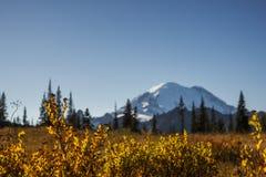 Verre foto van MT Regenachtiger in de herfst stock foto's
