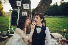 Verre mening van jong Kaukasisch bezet paar op romantische picni stock fotografie