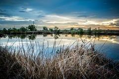 Verre sec avec le lac Photographie stock