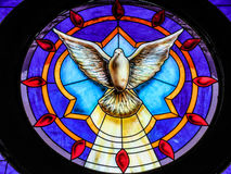 Verre souillé de messager de colombe Image libre de droits