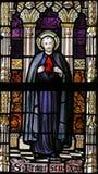 Verre souillé - saint Francis Xavier Photographie stock libre de droits