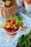 Verres avec un dessert crémeux léger et des baies Photo stock