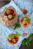 Verres avec un dessert crémeux léger et des baies Photographie stock