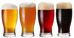 Verres de bière sur le fond blanc Photos libres de droits