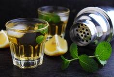 Verres de boisson alcoolisée avec le citron Images stock