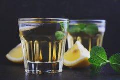 Verres de boisson alcoolisée avec le citron Photographie stock