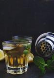 Verres de boisson alcoolisée avec le citron Photos stock