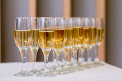 Verres de champagne à la réception Images libres de droits