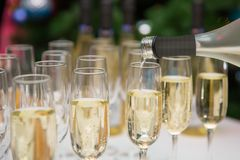 Verres de champagne réception Photographie stock libre de droits
