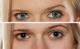 Verres de contact colorés photo libre de droits