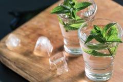 Verres de genièvre ou de vodka avec la menthe sur la table en bois photos stock