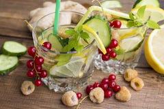 Verres de l'eau avec le fruit, le gingembre, le concombre et le Basil Photographie stock libre de droits