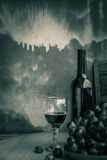 Verres de vin avec le fond noir et blanc Photo libre de droits