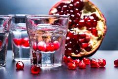 Verres de vodka sur la table Image libre de droits