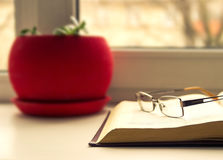 Verres et livres - attribut d'intelligence Photographie stock