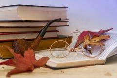 Verres et tuyau en automne images libres de droits