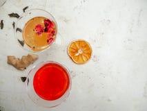 Verres multiples avec un grand choix de saveurs de kombucha sur un fond blanc image libre de droits