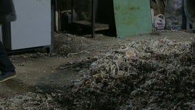 Verrichting van de extruder in een plastiekeninstallatie stock videobeelden