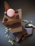 Verrine del cioccolato Immagine Stock Libera da Diritti