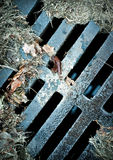 Verrostetes Abwasserkanal-Gitter Lizenzfreies Stockbild