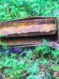 Verrostetes altes Einzelteil in einem Blumen-Flecken von purpurroten Blumen stockfotos